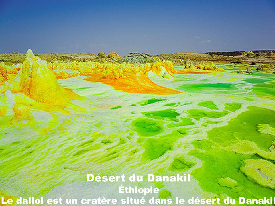 Désert du Danakil Éthiopie Le dallol est un cratère situé dans le désert du Danakil