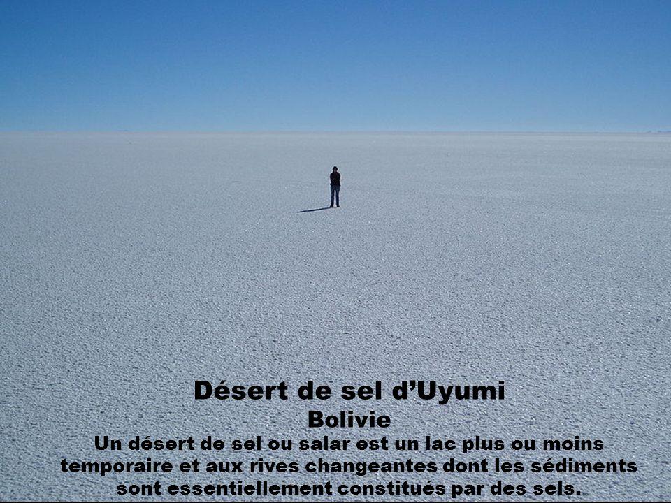 Désert de sel d'Uyumi Bolivie Un désert de sel ou salar est un lac plus ou moins temporaire et aux rives changeantes dont les sédiments sont essentiellement constitués par des sels.