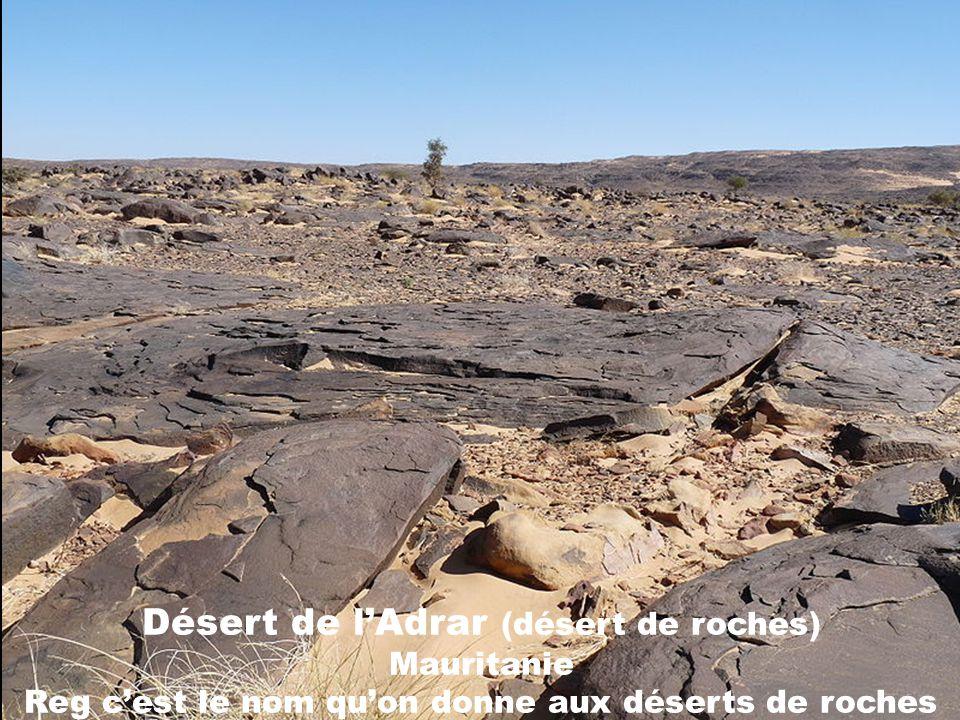 Désert de l'Adrar (désert de roches) Mauritanie Reg c'est le nom qu'on donne aux déserts de roches