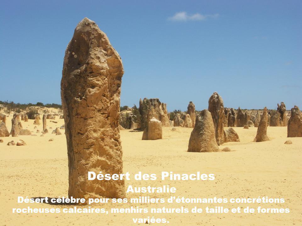 Désert des Pinacles Australie Désert célèbre pour ses milliers d'étonnantes concrétions rocheuses calcaires, menhirs naturels de taille et de formes variées.