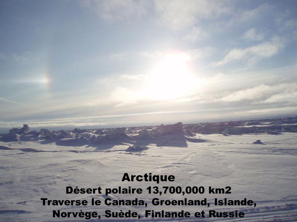Arctique Désert polaire 13,700,000 km2 Traverse le Canada, Groenland, Islande, Norvège, Suède, Finlande et Russie