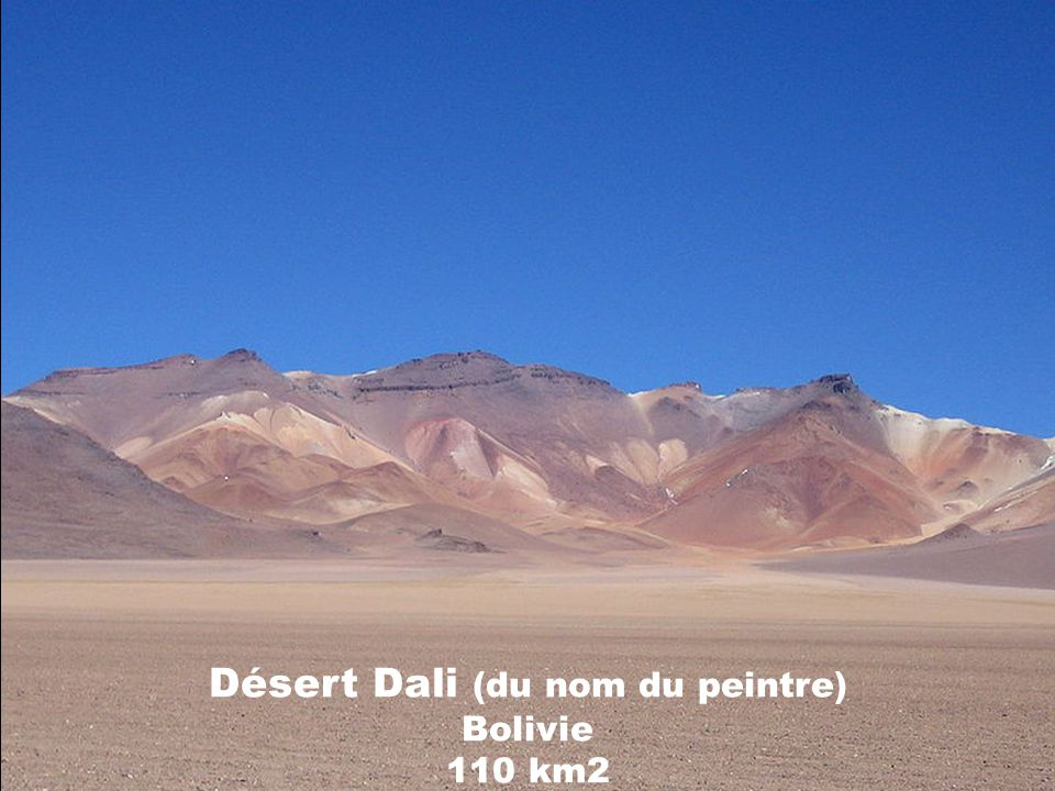 Désert Dali (du nom du peintre) Bolivie 110 km2