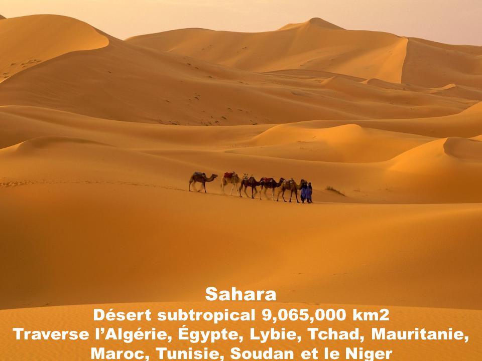 Sahara Désert subtropical 9,065,000 km2 Traverse l'Algérie, Égypte, Lybie, Tchad, Mauritanie, Maroc, Tunisie, Soudan et le Niger
