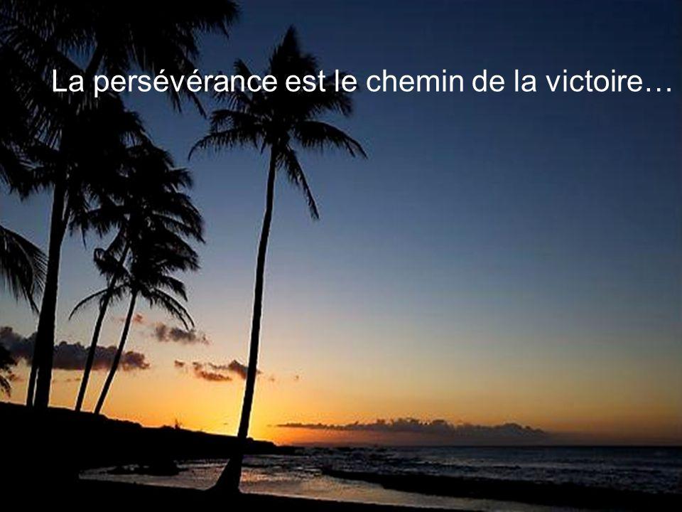 La persévérance est le chemin de la victoire…