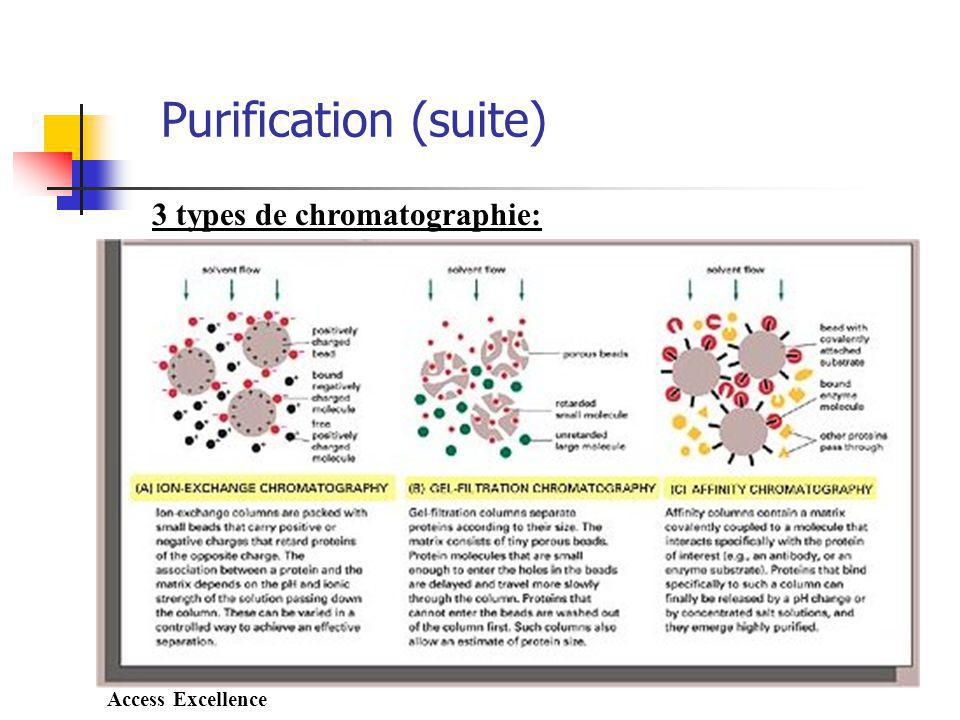 3 types de chromatographie: