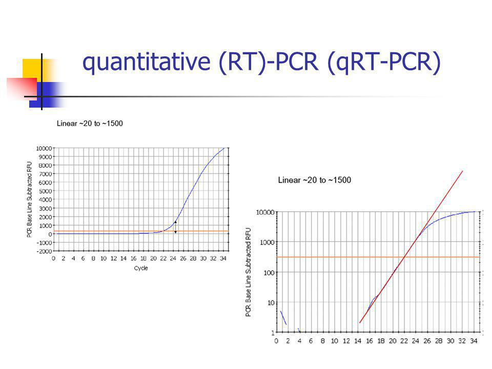 quantitative (RT)-PCR (qRT-PCR)