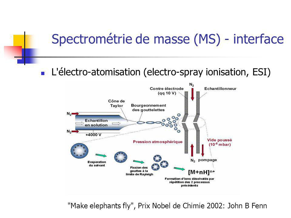 Spectrométrie de masse (MS) - interface