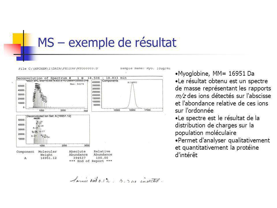 MS – exemple de résultat