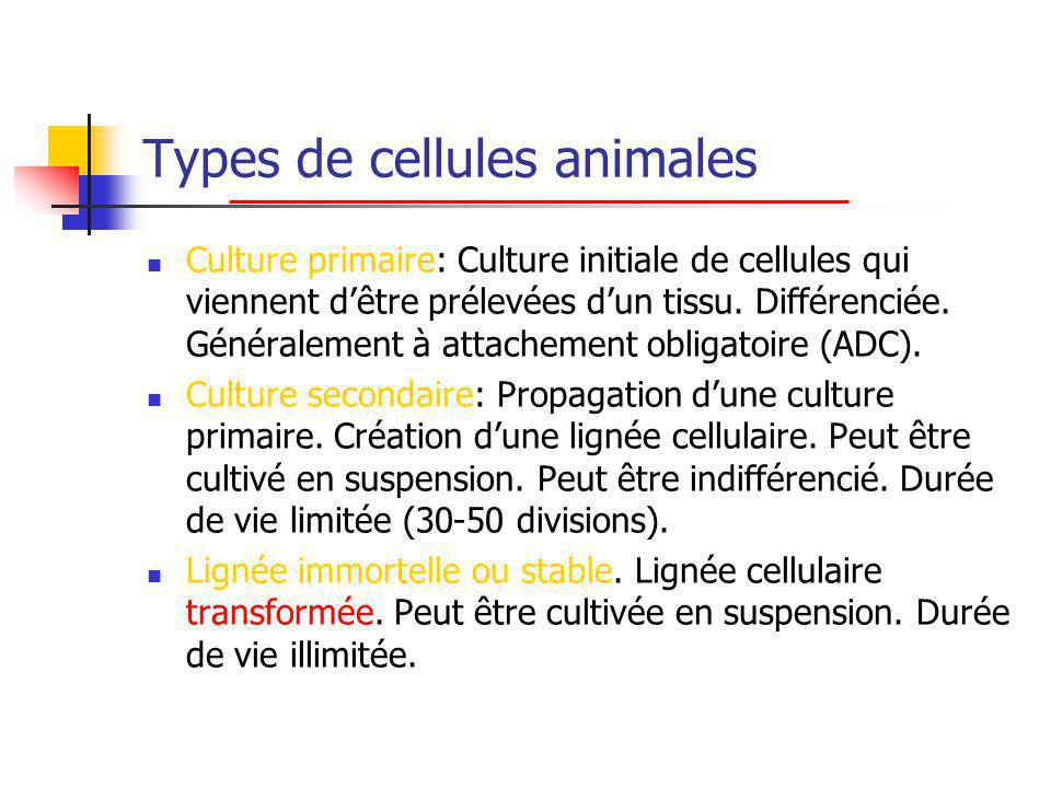 Types de cellules animales
