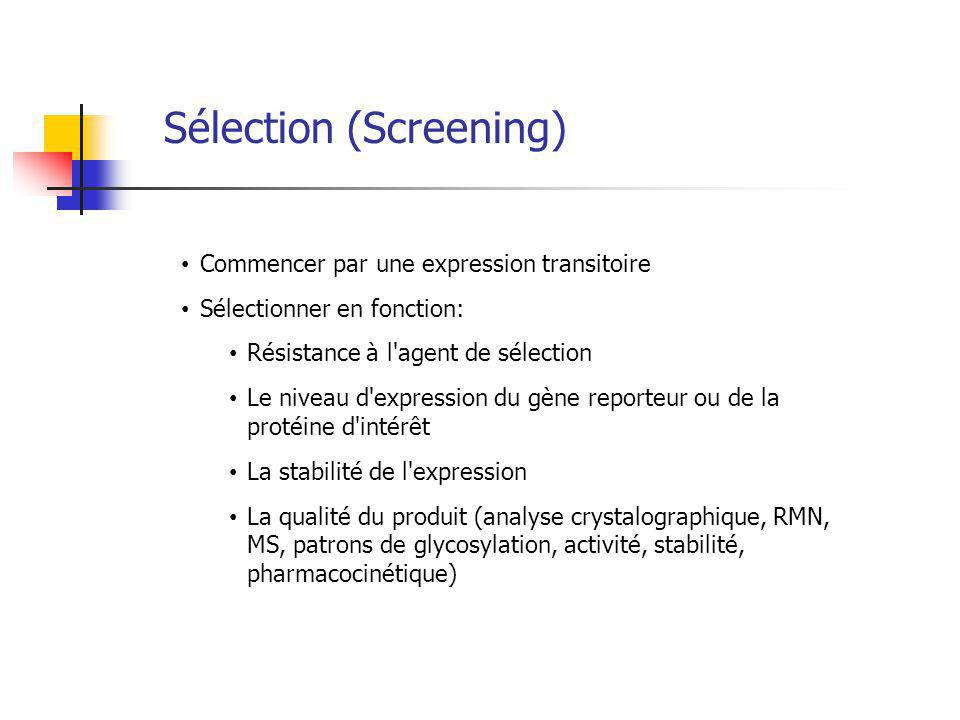 Sélection (Screening)
