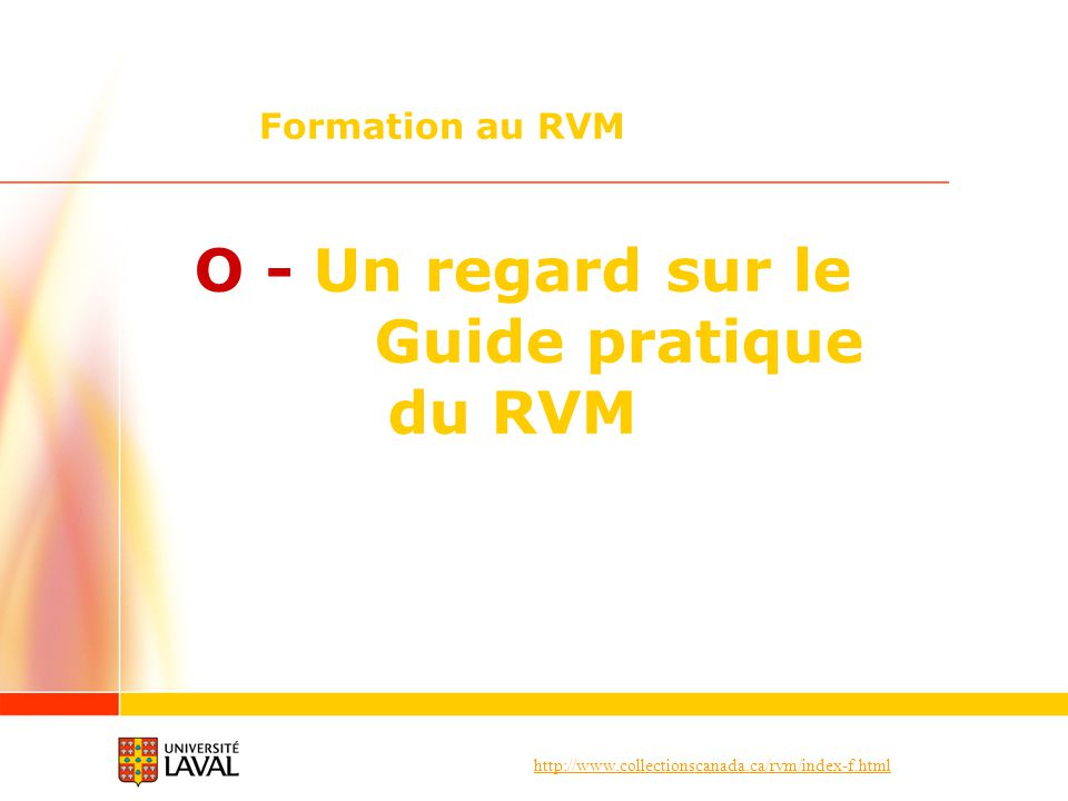 O - Un regard sur le Guide pratique du RVM