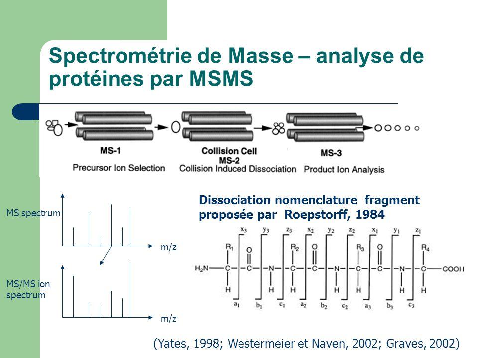 Spectrométrie de Masse – analyse de protéines par MSMS