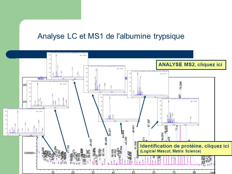 Analyse LC et MS1 de l albumine trypsique