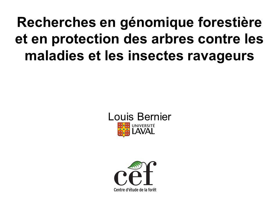Recherches en génomique forestière et en protection des arbres contre les maladies et les insectes ravageurs
