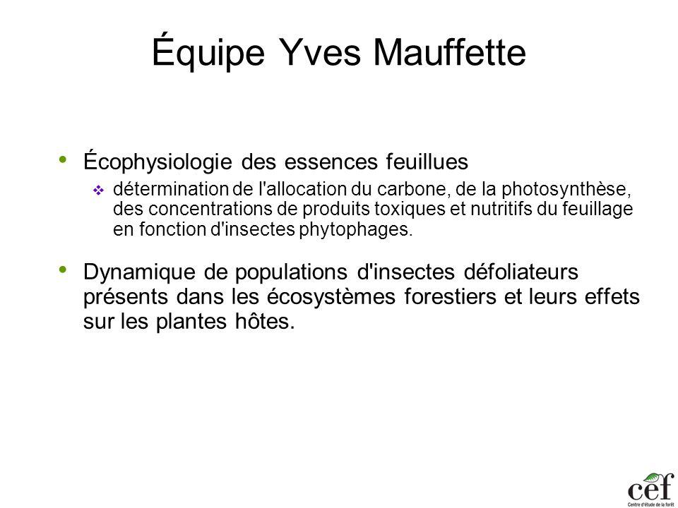 Équipe Yves Mauffette Écophysiologie des essences feuillues