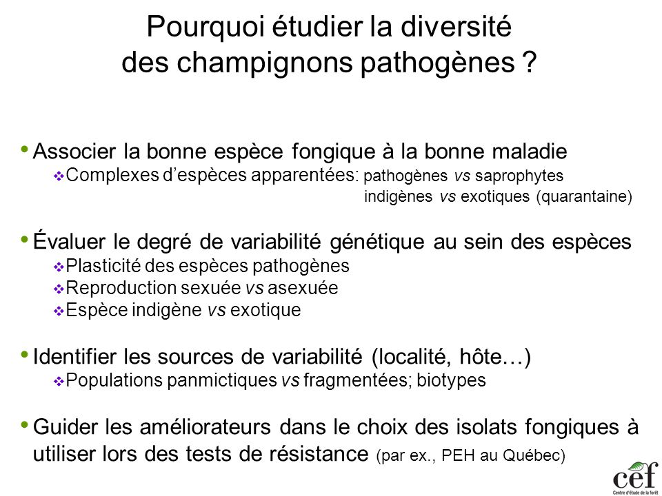 Pourquoi étudier la diversité des champignons pathogènes