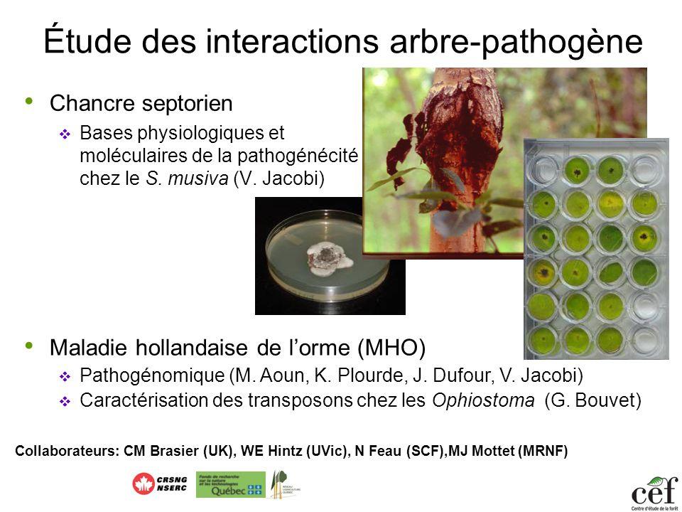 Étude des interactions arbre-pathogène