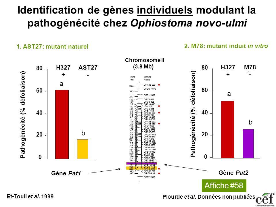 Identification de gènes individuels modulant la pathogénécité chez Ophiostoma novo-ulmi