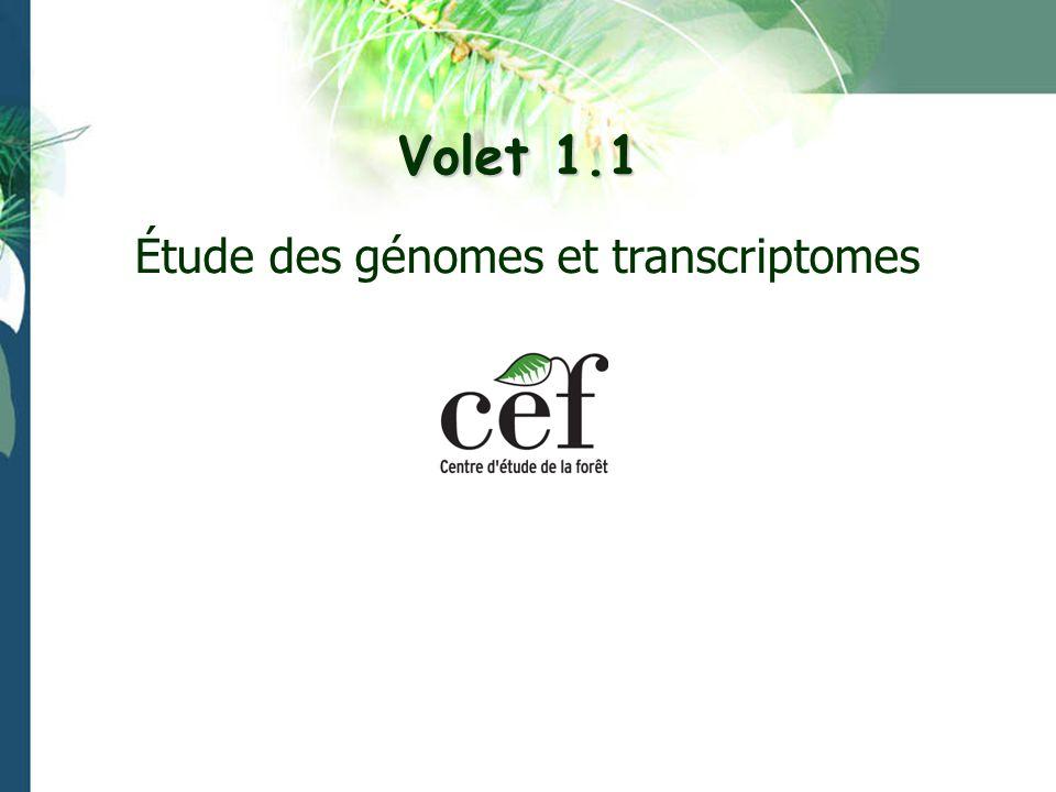 Volet 1.1 Étude des génomes et transcriptomes