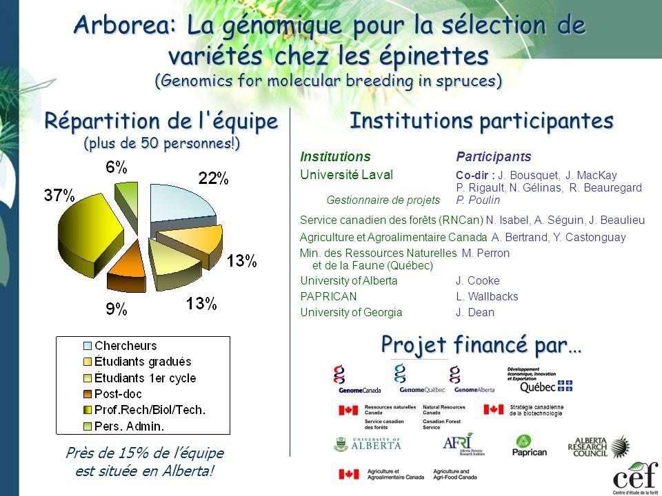 Arborea: La génomique pour la sélection de variétés chez les épinettes (Genomics for molecular breeding in spruces)