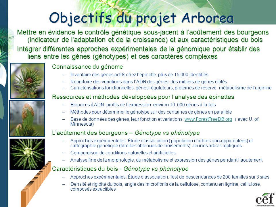 Objectifs du projet Arborea