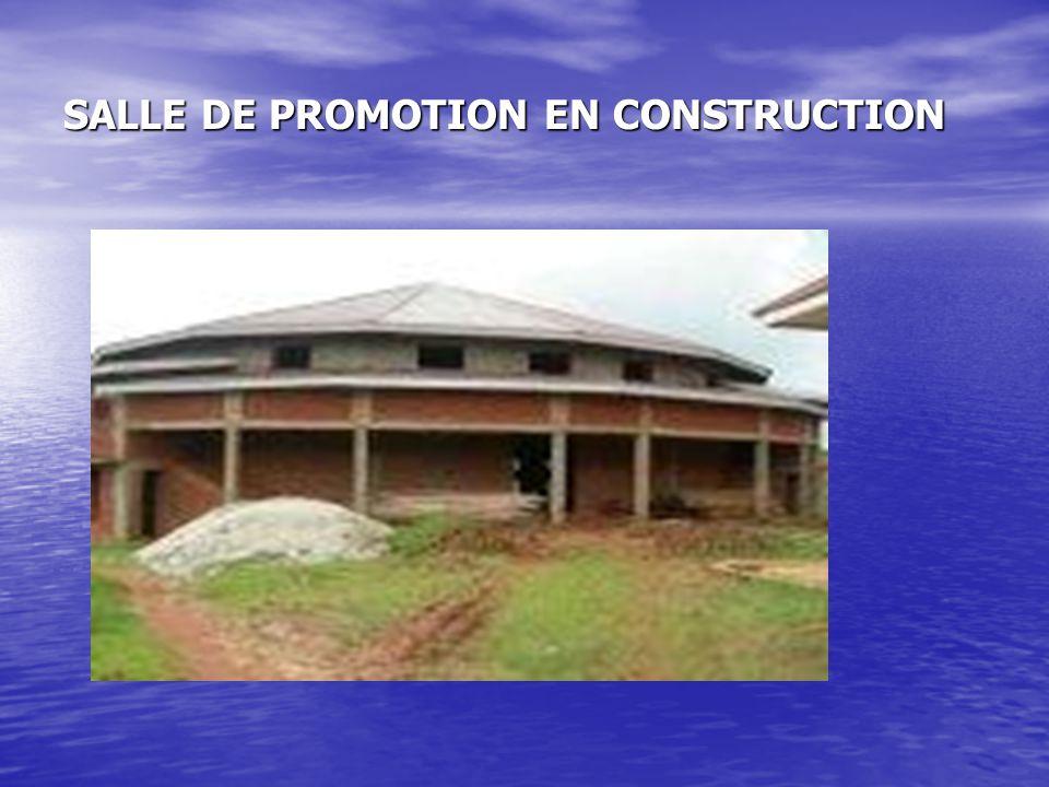 SALLE DE PROMOTION EN CONSTRUCTION