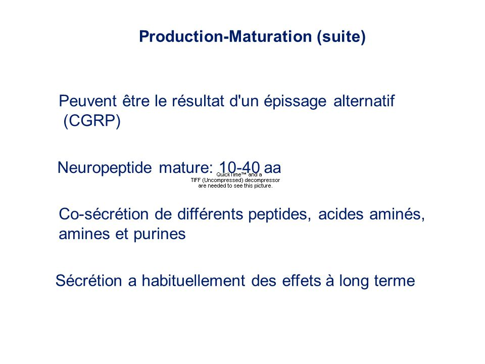 Production-Maturation (suite)
