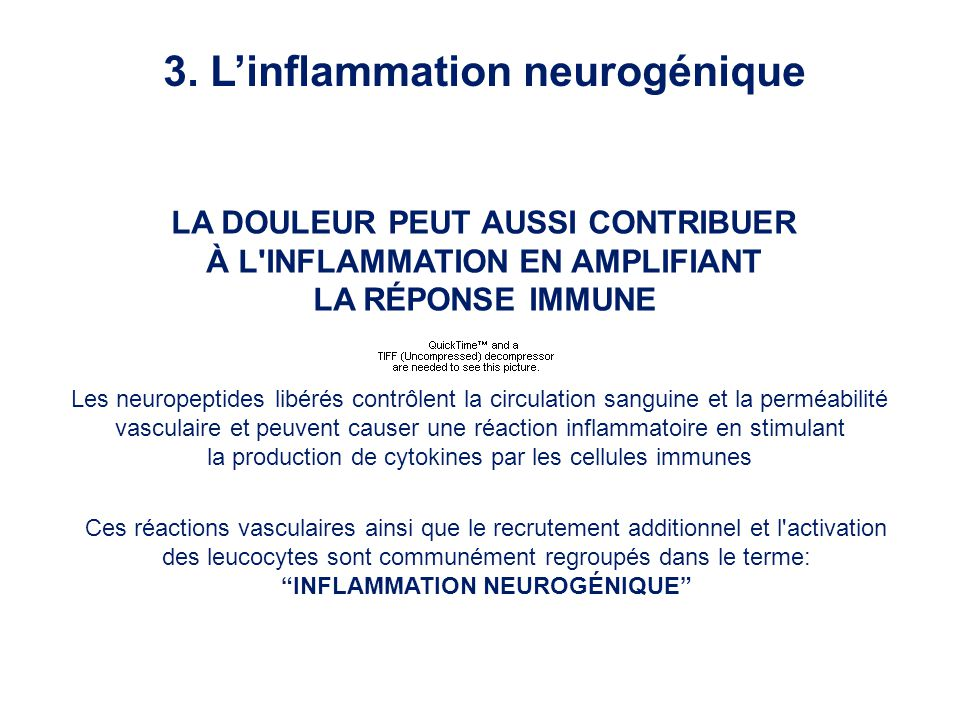 3. L'inflammation neurogénique