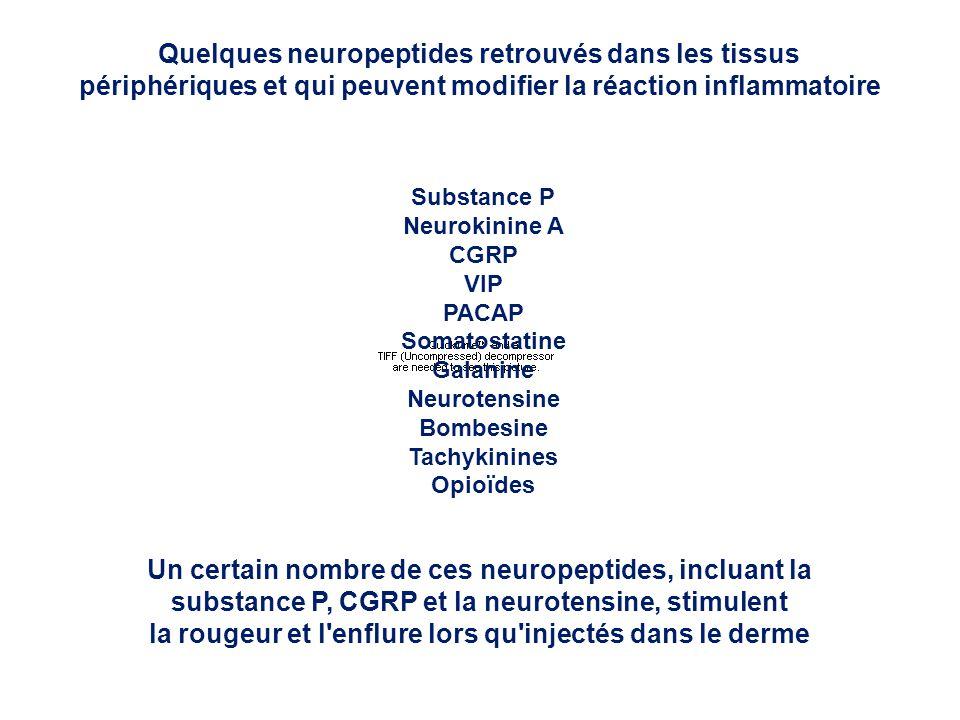 Quelques neuropeptides retrouvés dans les tissus