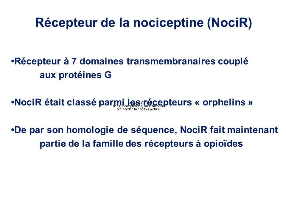 Récepteur de la nociceptine (NociR)