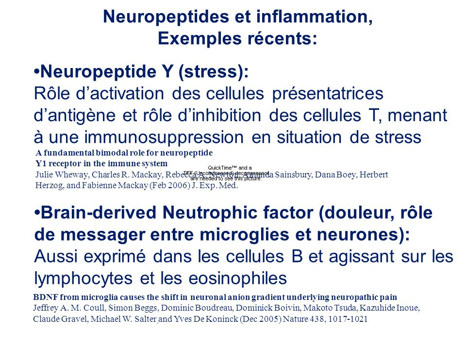 Neuropeptides et inflammation,