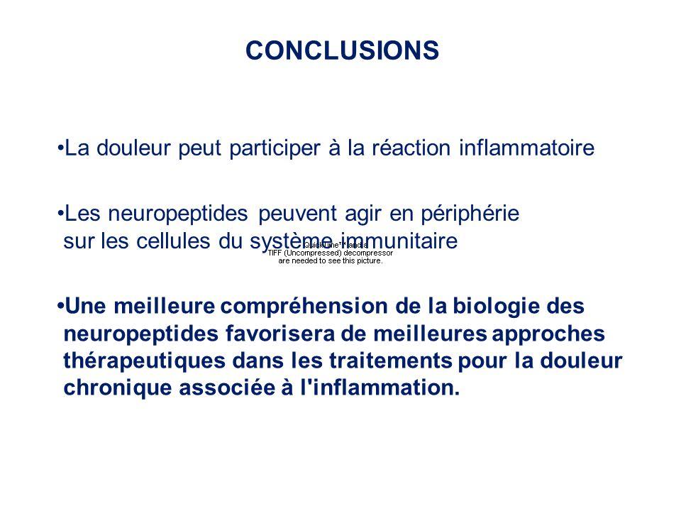CONCLUSIONS •La douleur peut participer à la réaction inflammatoire