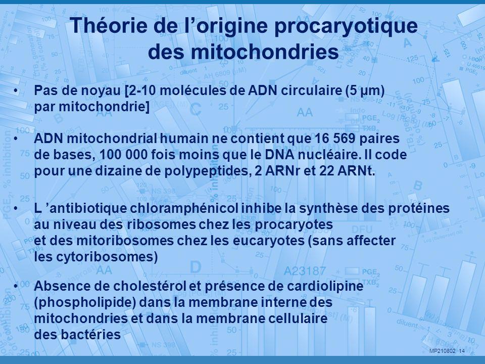 Théorie de l'origine procaryotique des mitochondries