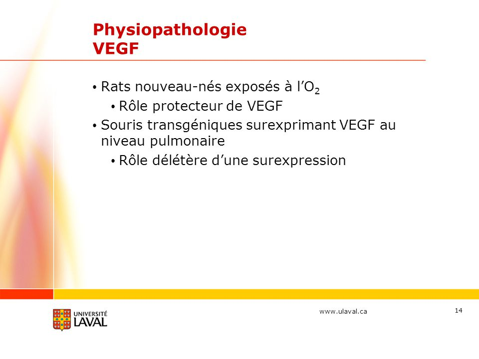 Physiopathologie VEGF