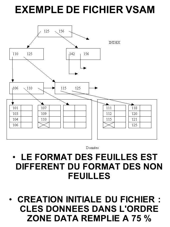 EXEMPLE DE FICHIER VSAM