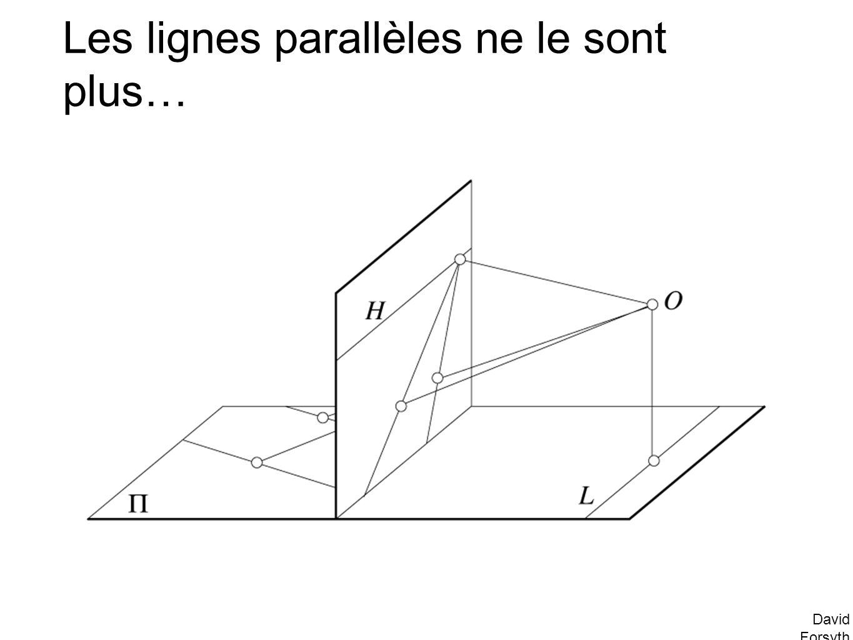 Les lignes parallèles ne le sont plus…