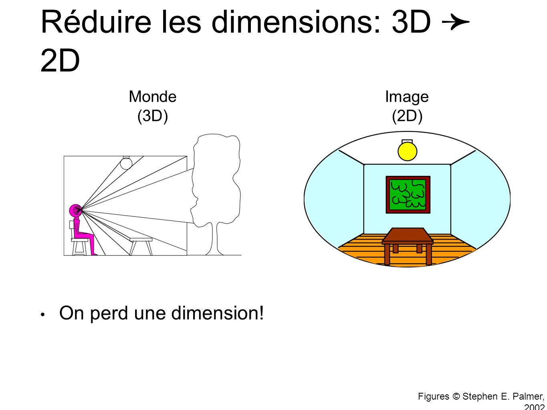 Réduire les dimensions: 3D ➛ 2D