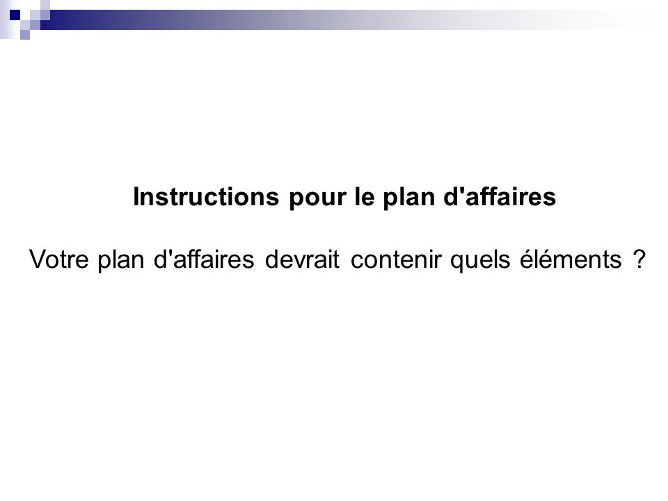 Instructions pour le plan d affaires