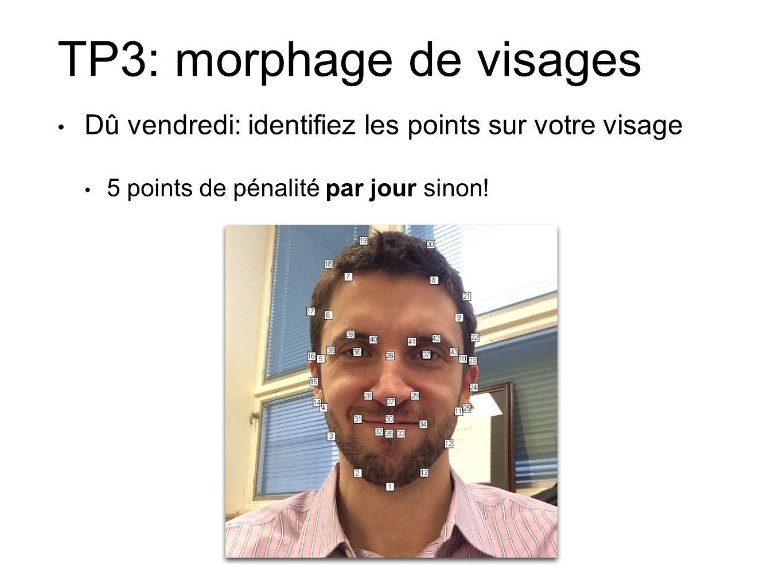 TP3: morphage de visages