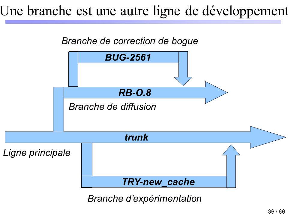 Une branche est une autre ligne de développement