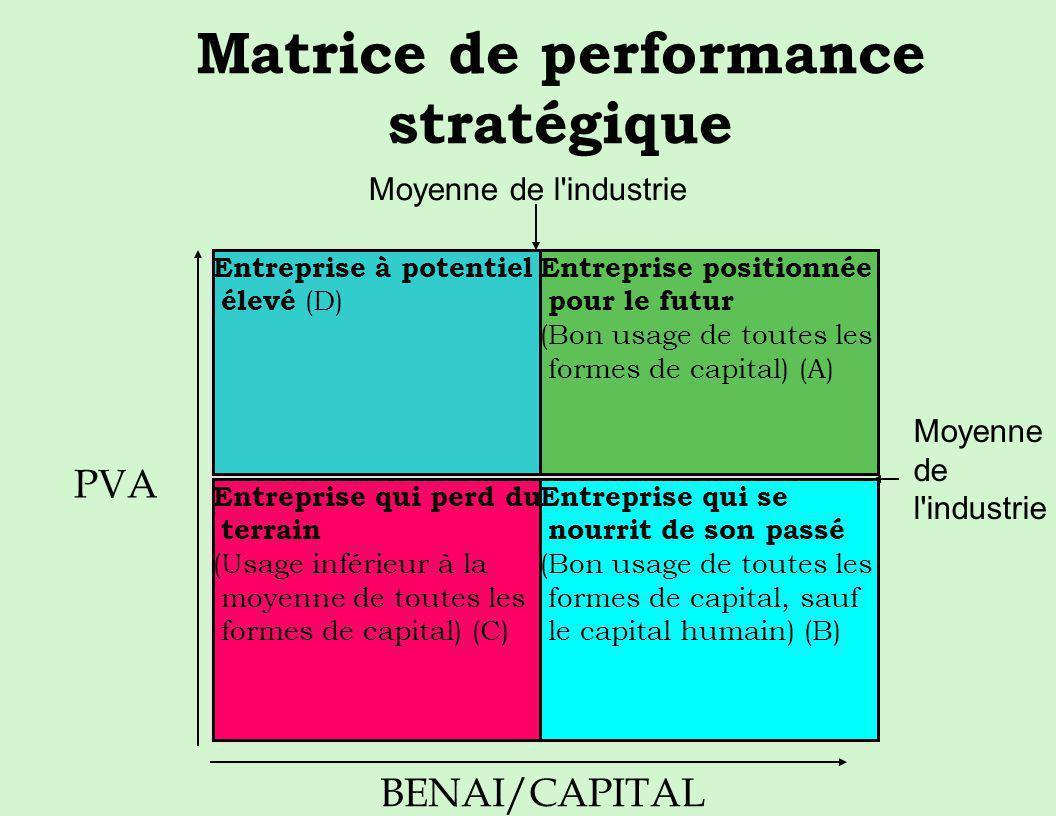 Matrice de performance stratégique