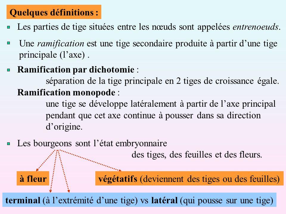 Quelques définitions :