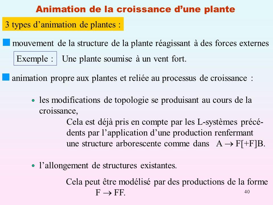 Animation de la croissance d'une plante