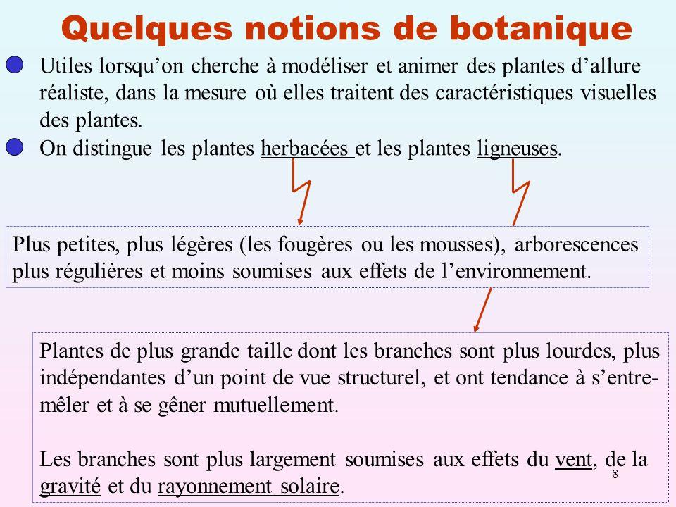 Quelques notions de botanique