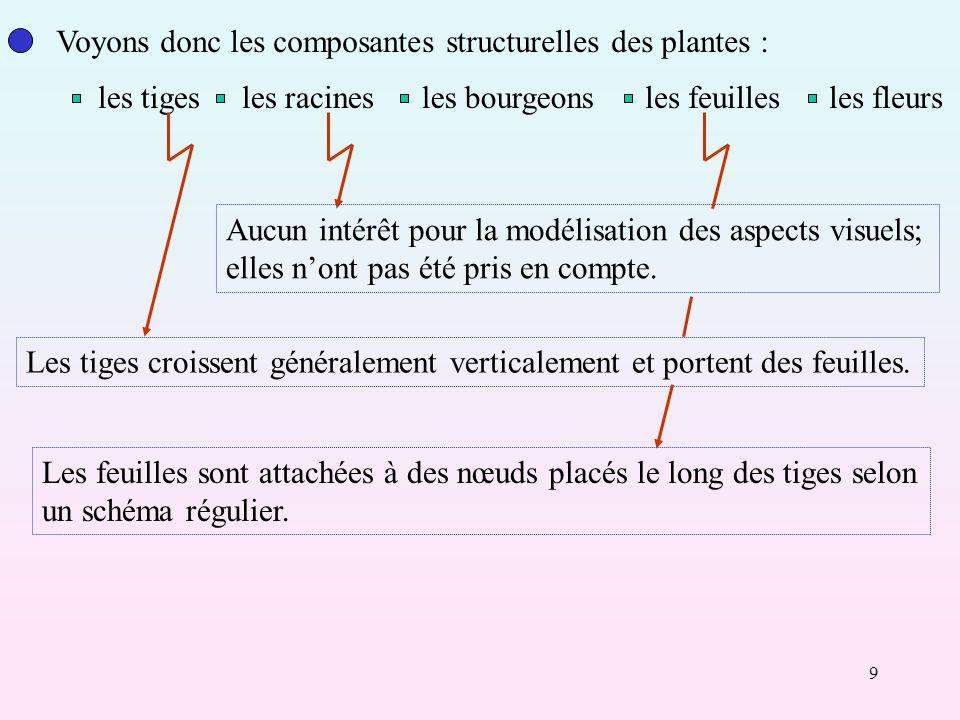 Voyons donc les composantes structurelles des plantes :