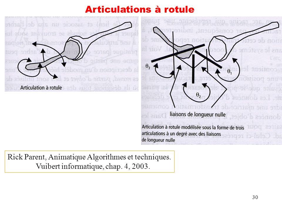 Articulations à rotule