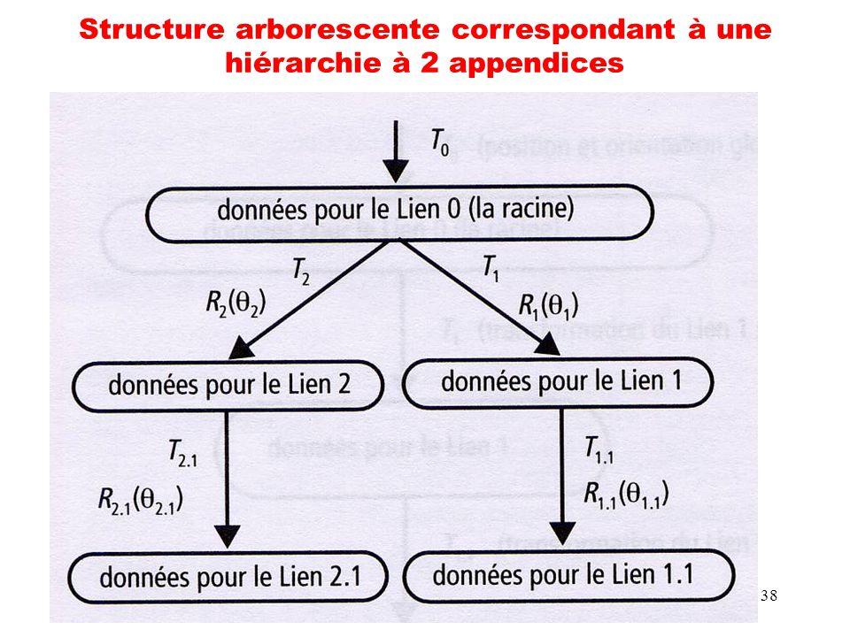 Structure arborescente correspondant à une hiérarchie à 2 appendices