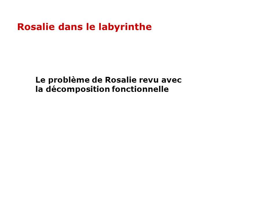 Rosalie dans le labyrinthe