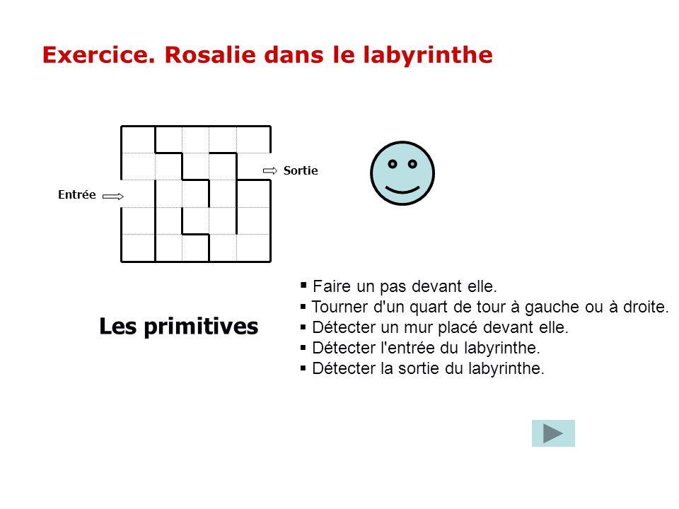 Exercice. Rosalie dans le labyrinthe