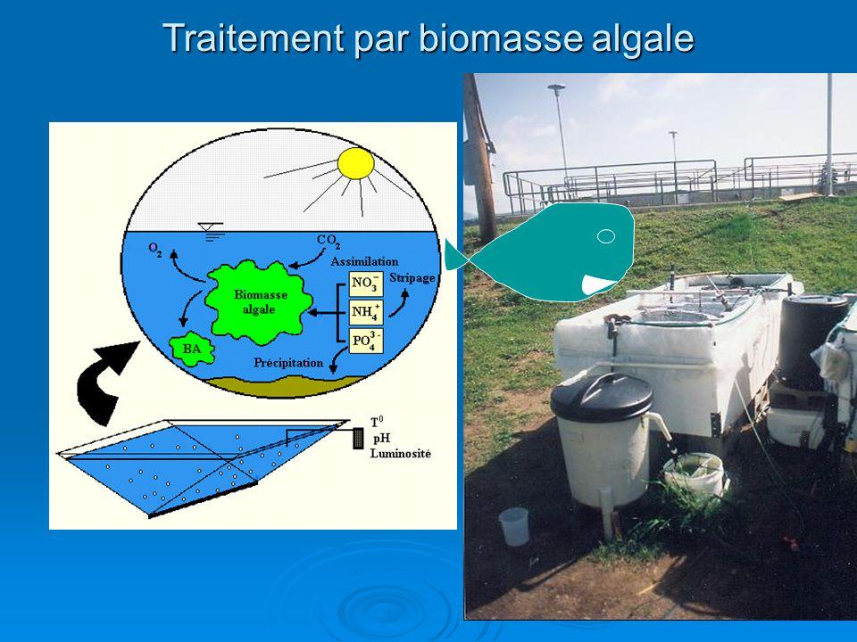 Traitement par biomasse algale